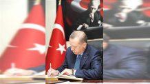 Cumhurbaşkanı Erdoğan'ın Çalışan Gazeteciler Günü mesajı